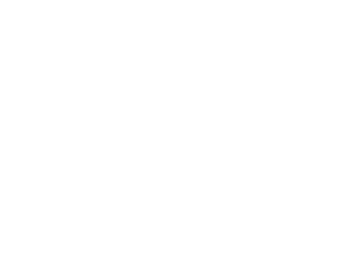 big fake wedding