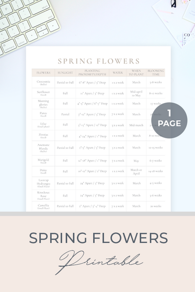 spring flowers -Printable_Website