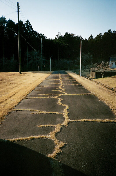 Looking down a road with dead golden grass growing through asphalt cracks