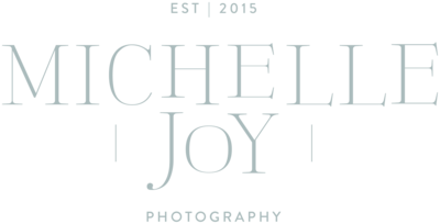Michelle Joy Photography Columbus Ohio Wedding Senior Photographer Natural Light Joyful2