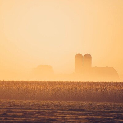 farm-sunset-sunrise-fog-farmland_t20_EVV4YX