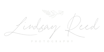 Lindsay Reed Photography
