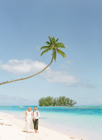 The bride and the groom walking on the white sand beach in the Moorea Beach Lodge. Palm, blue water and paradise island mood