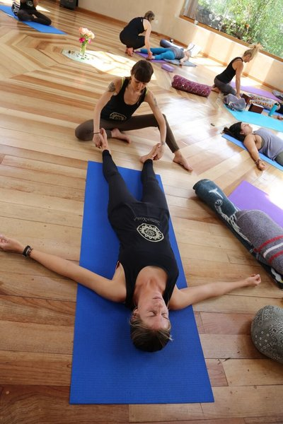 Online Therapeutic Yoga Teacher Training CE- Soma Yoga Institute - Yoga HAnds on Adjustments