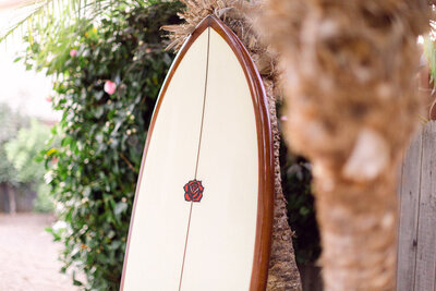 custom surf board leaning against palm tree