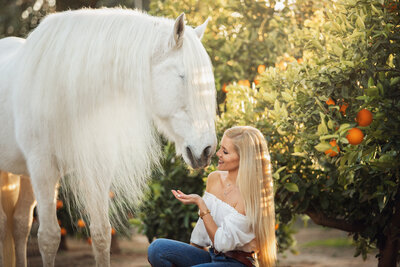 White horse long manes