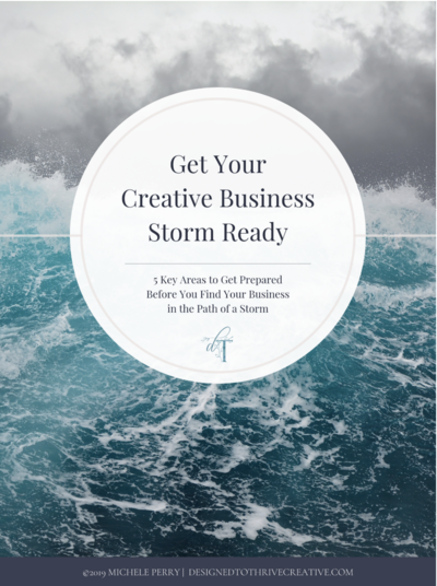cover of business storm plan