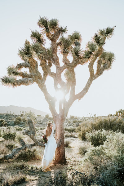 Joshua-Tree-Wedding-Photographer005