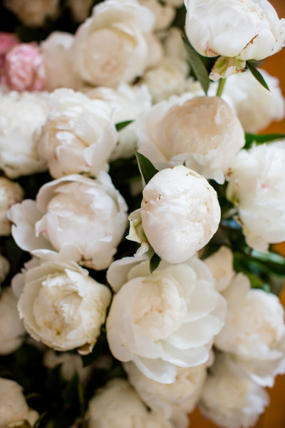 grouping of peonies in holland Michigan for a wedding