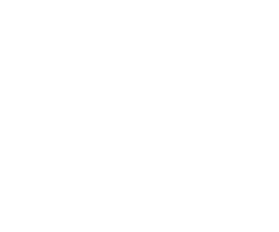 Peony Bouquet 1 16x16inches PNG