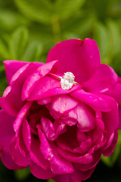 Bride's engagement ring in pink flower at lincoln park chicago