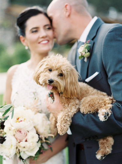 Bride & Groom and Their Dog at Wedding in Montana