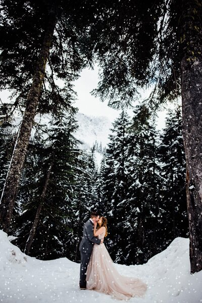 Washington Winter Elopements can be beautiful snowy events.