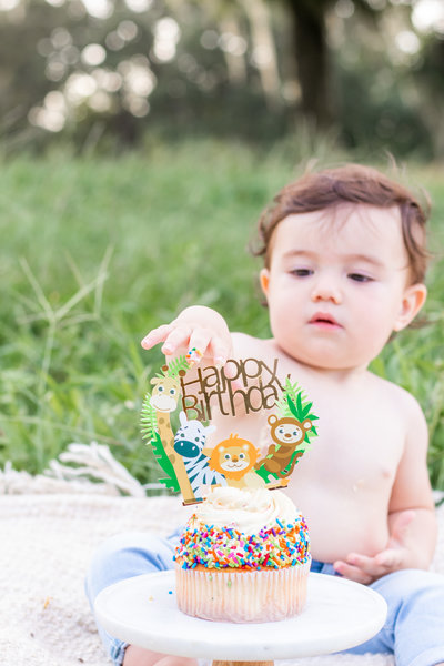 first birthday cake smash under oak trees