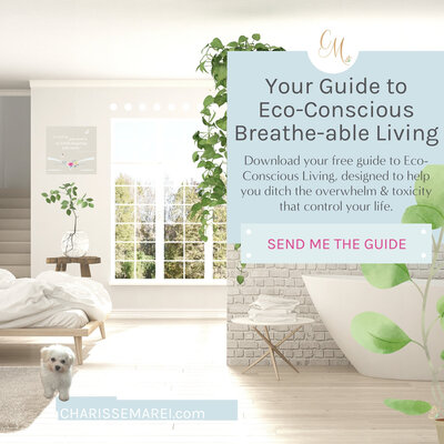 Charisse-Marei-eBook-Your-Guide-to-Eco-Conscious-Breathe-able-Living