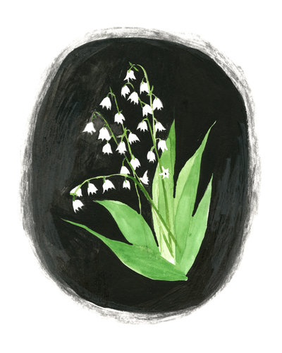 Lindsay Hine - Lily of the valley