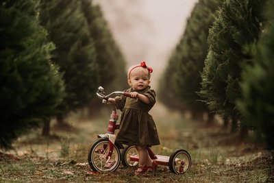 girl toddler stands next to radio flyer tricycle for christmas photos