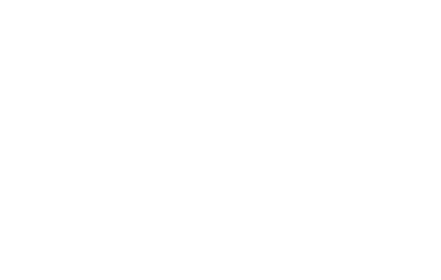 Weddingchicks-white