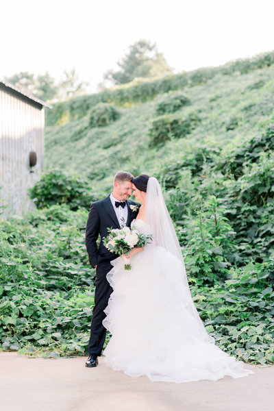 groom in a black tie and black tux with bride against plush greenery at sunset at the foundry at puritan mill in atlanta by atlanta wedding photographer lane albers photography