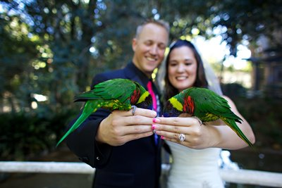 Couple feeding birds on their wedding day at San Diego Safari Park