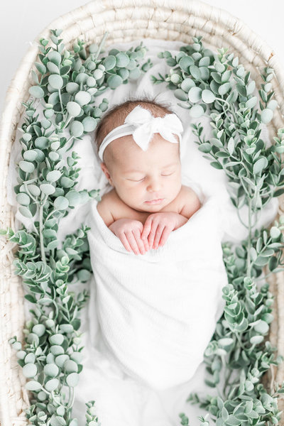 Baby rests during Newborn session with Akron Photographer Erin Davison