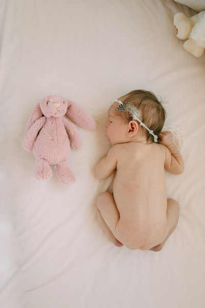 raleigh newborn photographer violet88535