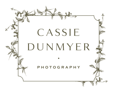 Cassie Dunmyer Photography Indianapolis Indianapolis Fort Wayne Bloomington Indiana Engagement Wedding Fine Art Photojournalistic Authentic Portrait9