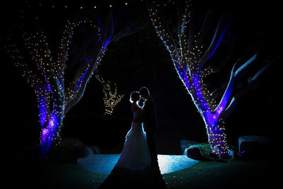 Stunning wedding photo at Paradise Falls in San Diego