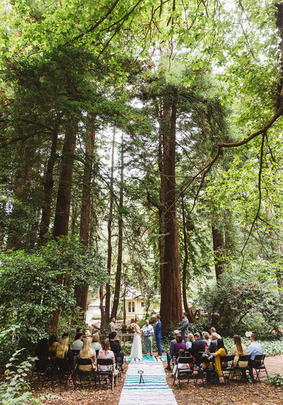 stern grove wedding photos in san francisco