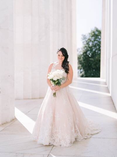 Klaire-Dixius-Photography-Washington-DC-Wedding-Photographer-War-Memorial-Lincoln-Memorial-Capitol-Building-District-Winery-Elopement-Omkar-Jaclyn-B&G216