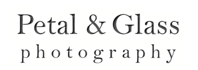 South Jersey Wedding and Portrait Photographer