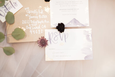 Your Jubilee Arizona wedding planner mountain shadows scottsdale