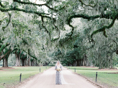 Boone Hall Wedding Blue Fine Art-24