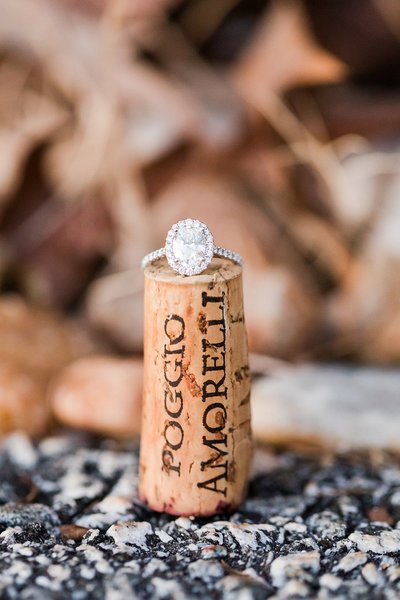 Montaluce Winery-North Georgia_Engagement Photos-_0038