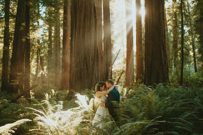 boardman-state-park-redwoods-elopement-oregon-photographer-dawnphoto-30