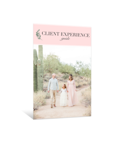 Client Experience Guide Product Box