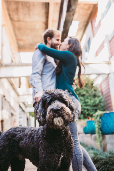 Dog-Engagement-Photo-Atlanta