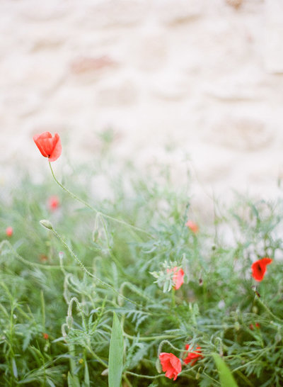 provence-wedding-photographer-jeanni-dunagan-1