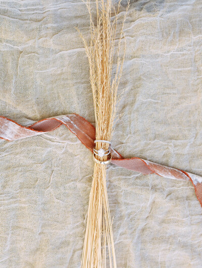 wedding rings on blades of dry grass and pink ribbon