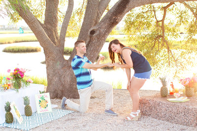 20160630_PineappleEngagement_0162