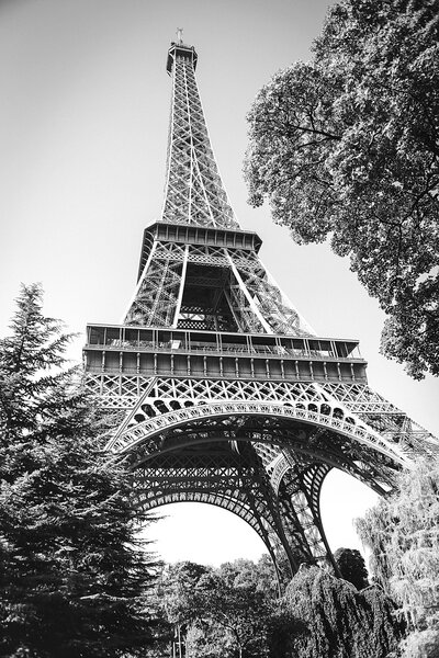 Eiffel Tower by Knoxville Wedding Photographer Amanda May Photos