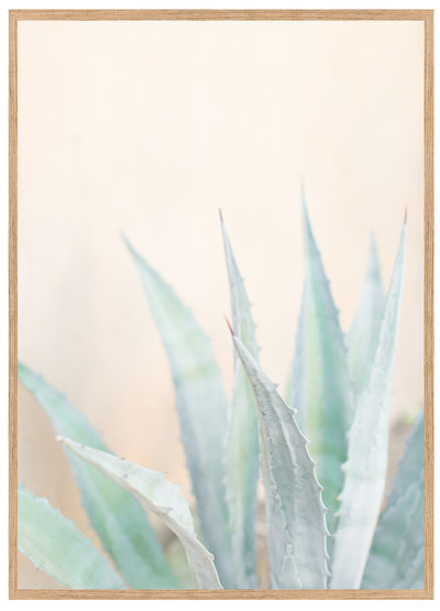 Aloe-You-Vera-Much-Framed