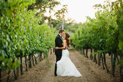 A bride and a groom kissing in the middle of a vineyard in northern california