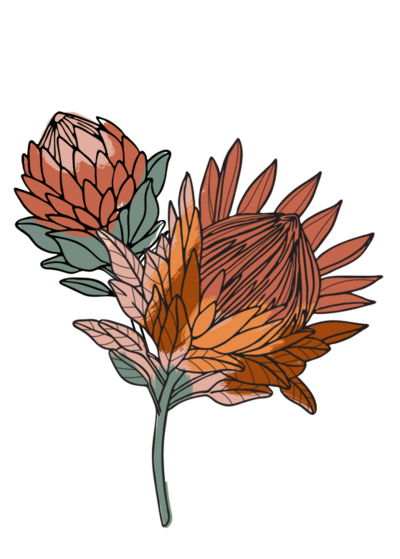 Photoshop protea painting