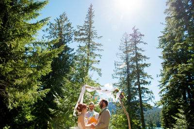 tall trees behind bride and groom at lost lake