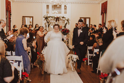 Pawfect for You Pet Care during wedding New York Massachusetts Connecticut New Jersey Pennsylvania6