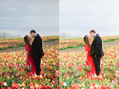 spring photos of couple in tulip field