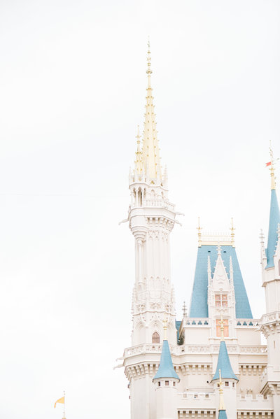 sierra and matt walt disney world wedding 2018-13