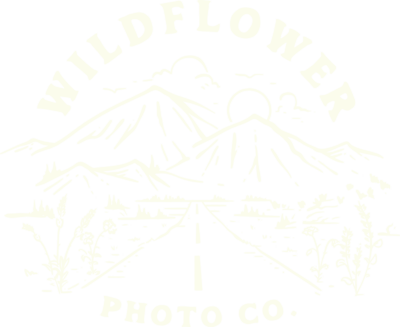 Wildflower Photo Co - 3 White