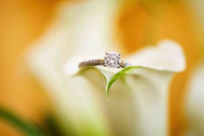 Wedding ring balanced on edge of trumpet lily. Photo by Ross Photography, Trinidad, W.I..